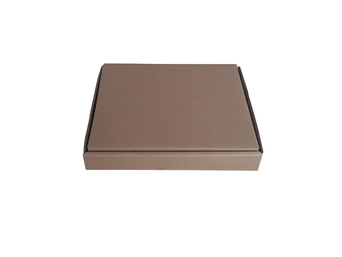 Lote de Caixas de Papelão 26x23x3,5 cm