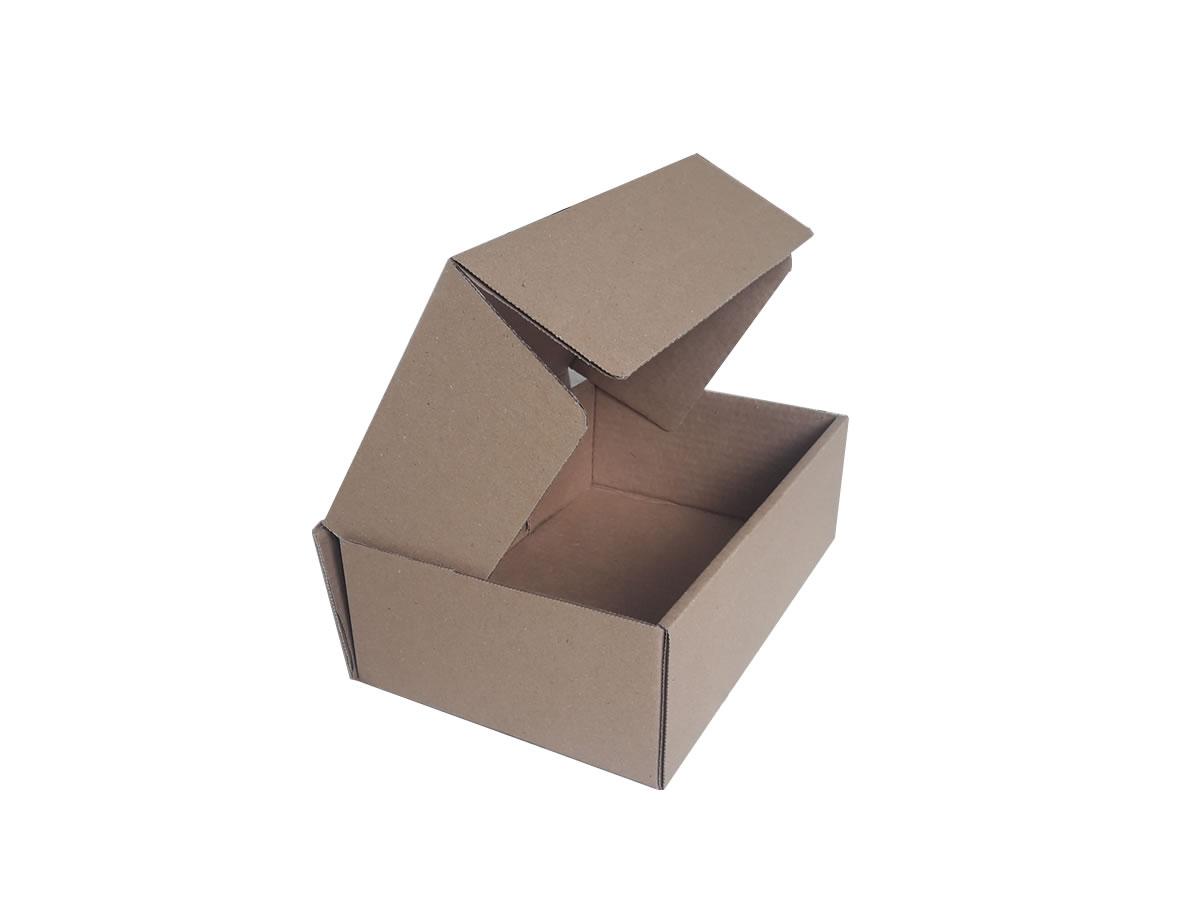 Lote de Caixas de Papelão 27x18x9 cm