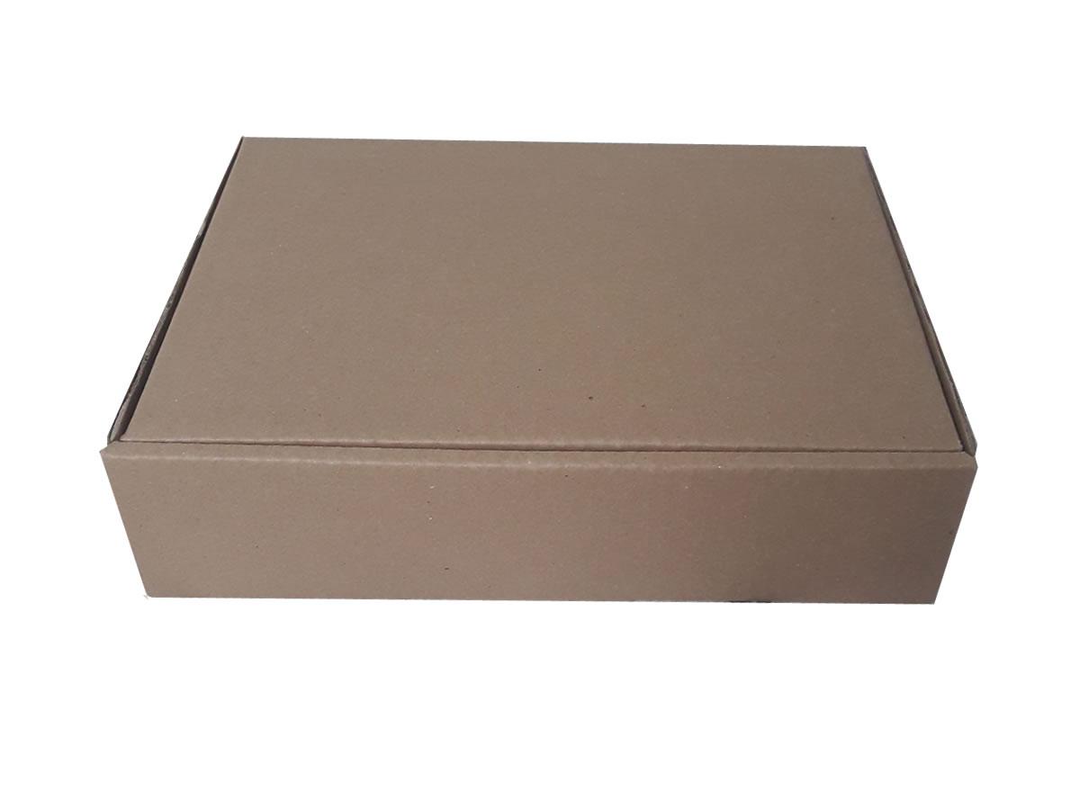 Lote de Caixas de Papelão 28x21x7 cm