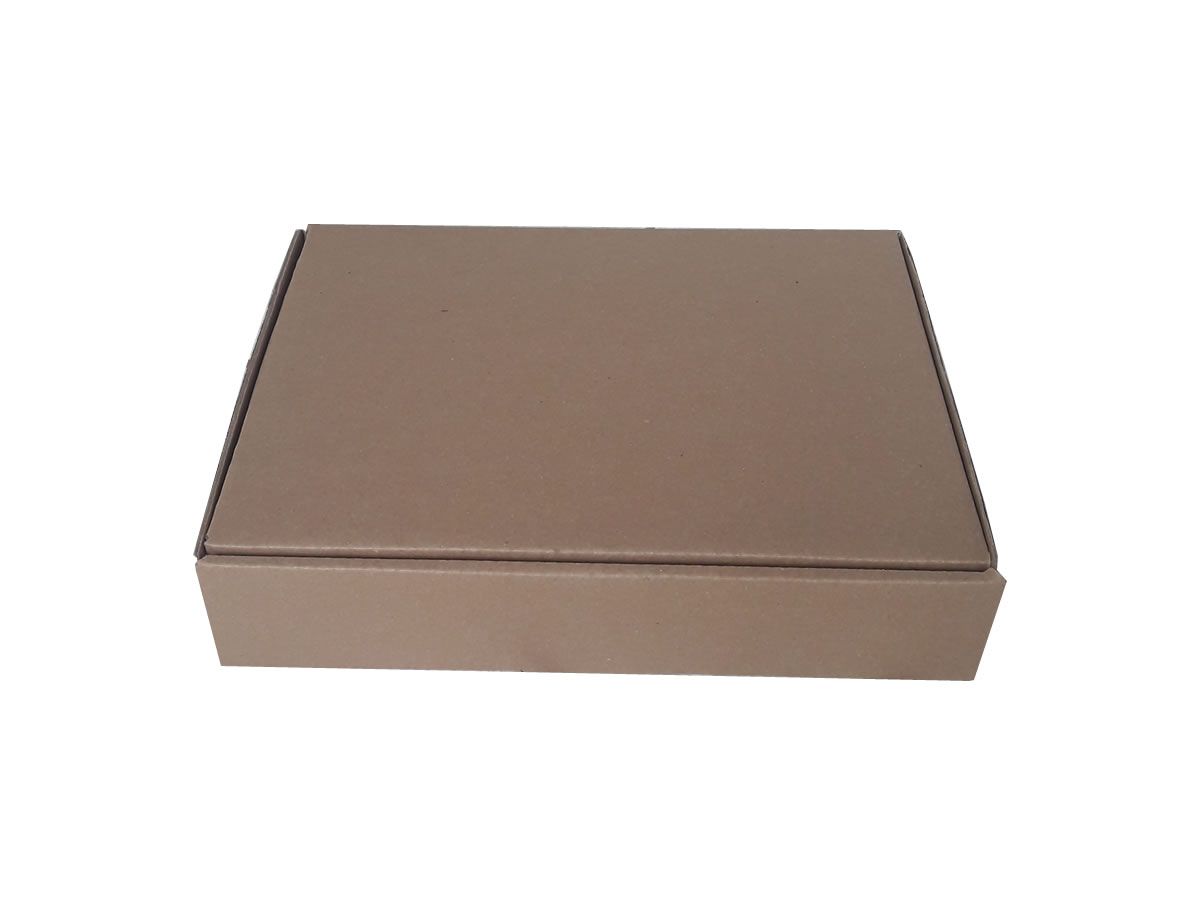 Lote de Caixas de Papelão 31,5x24x6,5 cm