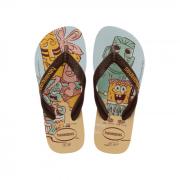 Chinelo Havaianas Dourado Masculino Top Sponge Bob