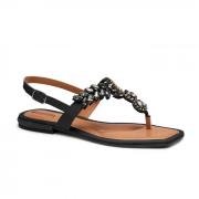 Sandália Mississipi Preto Feminino Q4922