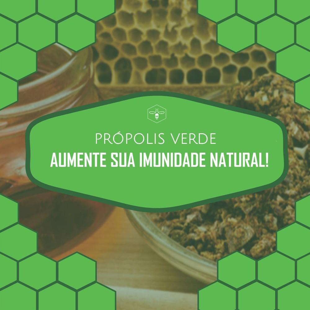Própolis Marrom 30 ml Fauna & Flora - Solução Alcoólica 15% - Kit com 6 Frascos