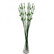 6 Hastes Bambu Da Sorte