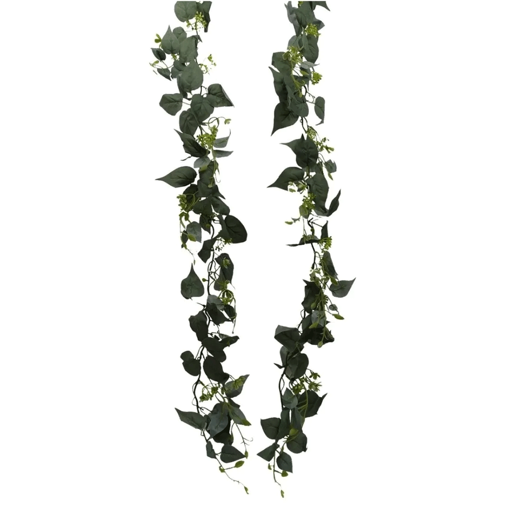 Fio de Folhagens de Rosas