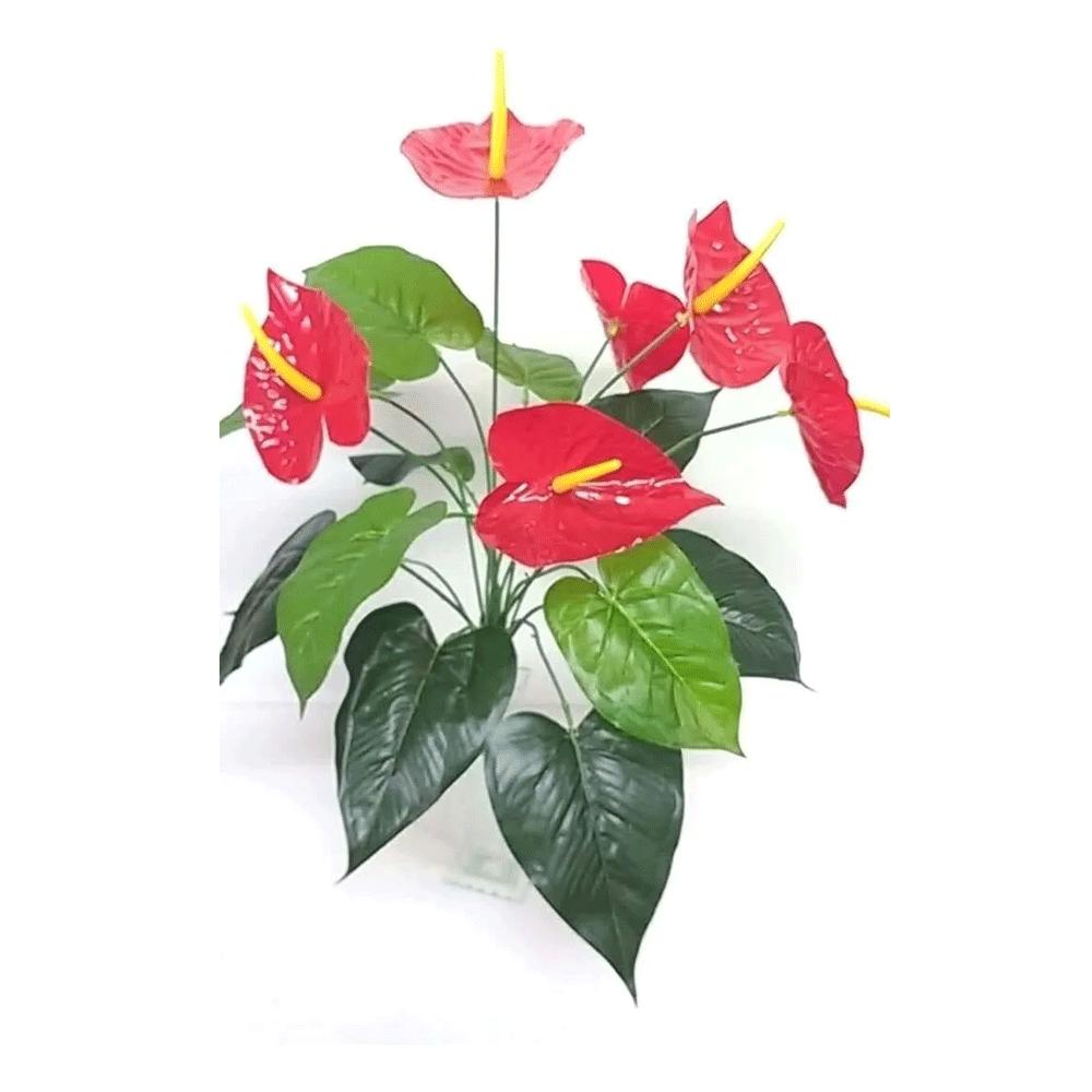 Flor Anturio