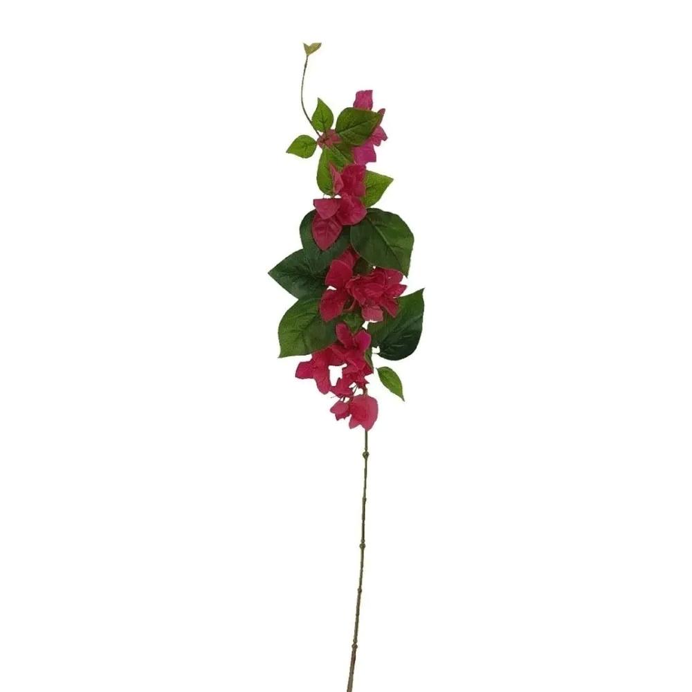 Primavera Buganvília
