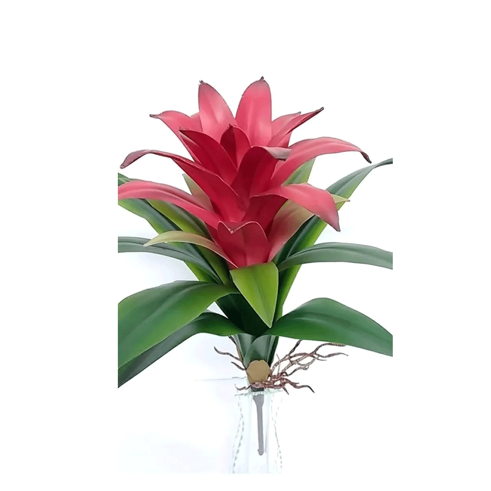 Galho Flor Bromélia (R)