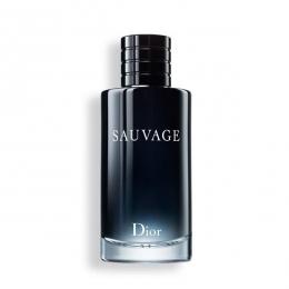Sauvage Dior Eau de Parfum - Perfume Masculino 100ml