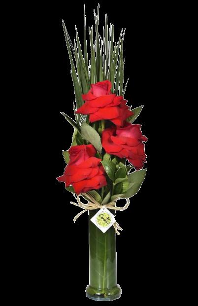 Amoroso  - Floricultura Cambuí