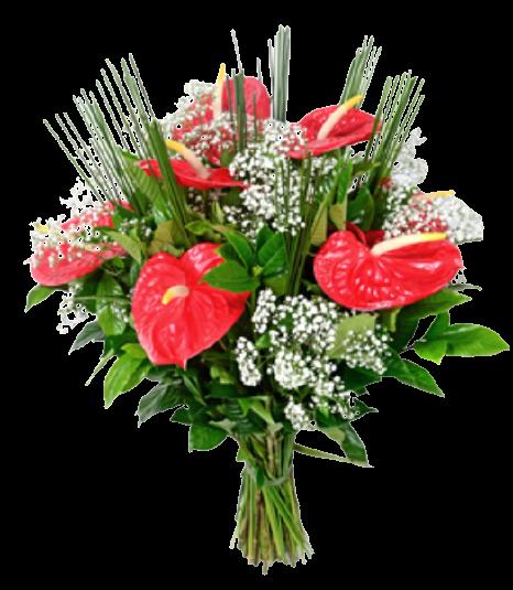 Bouquet Renovação  - Floricultura Cambuí