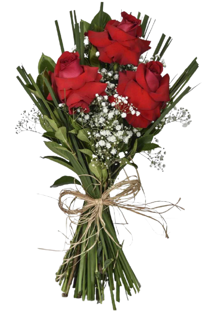 Núpcia  - Floricultura Cambuí