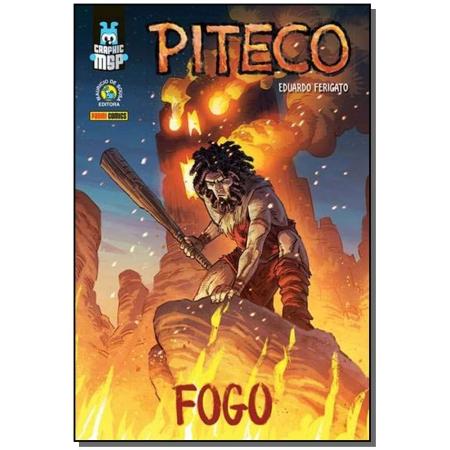 Graphic MSP - Piteco - Fogo