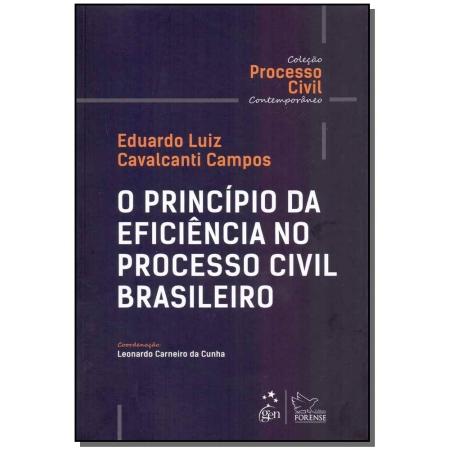 Principio Da Eficiencia No Processo Civil Bras., O