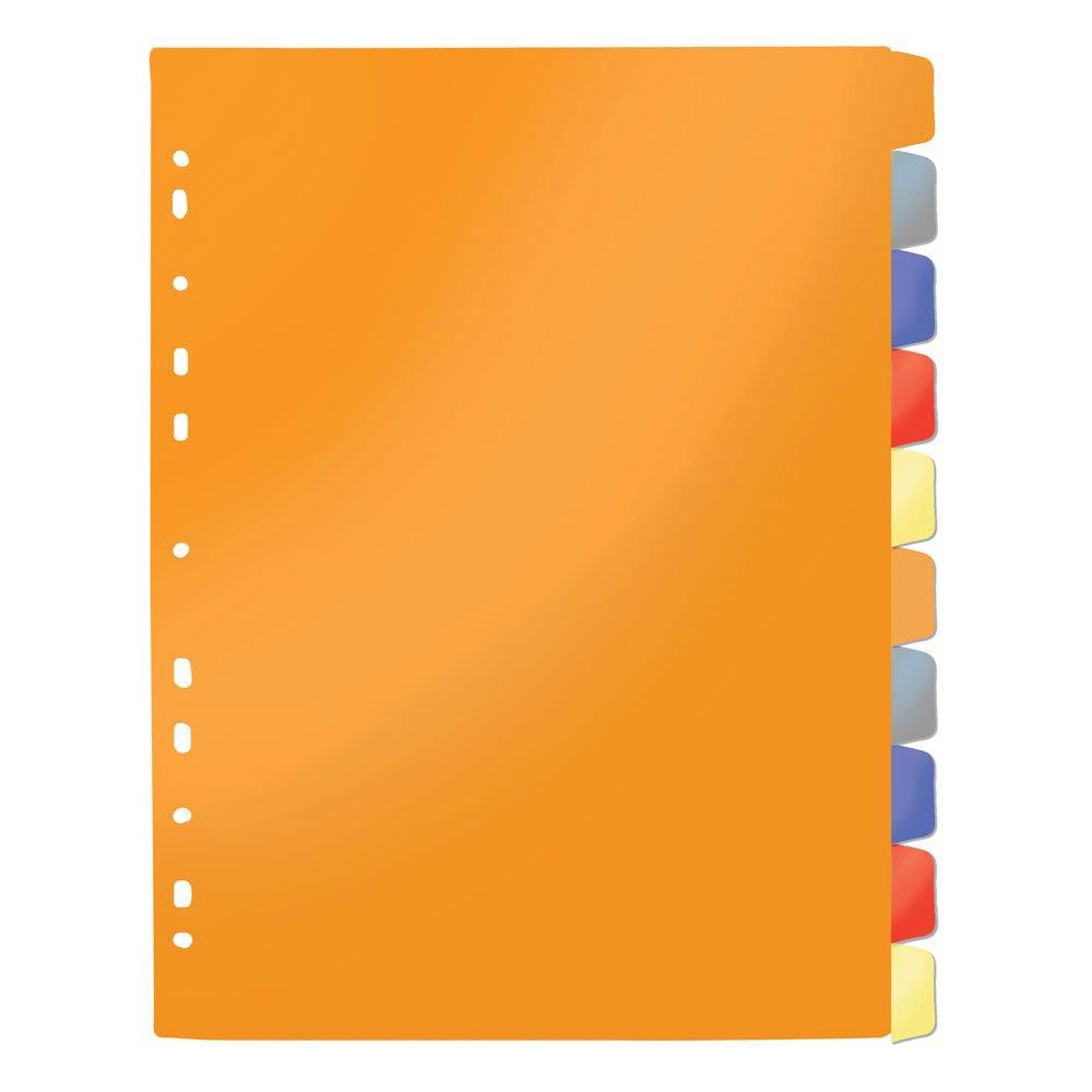 Divisórias para Fichário Coloridas 10 matérias Dac