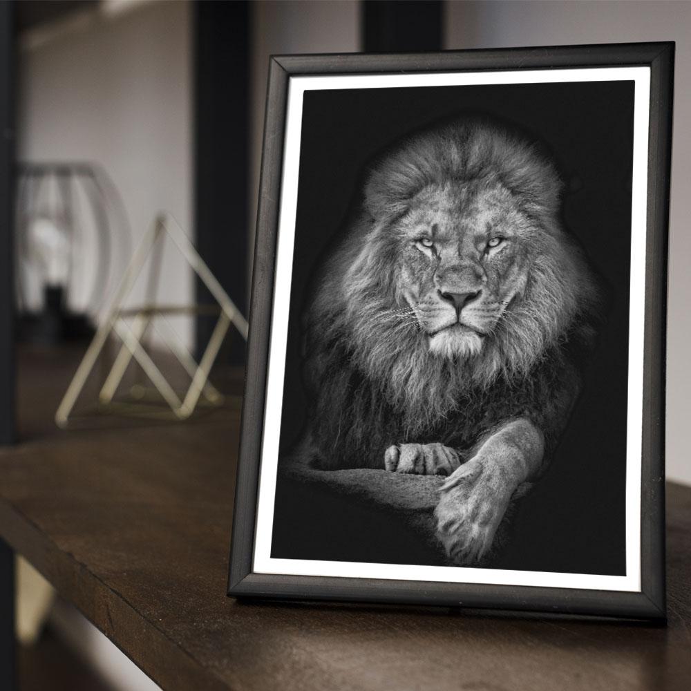 Quadro Decoração Leão Majestoso