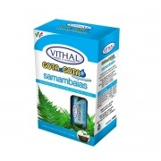 Fertilizante Líquido Gota A Gota Samambaias Vithal 192ml