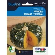 Sementes de Abóbora Bahiana Tropical - 10 Gramas