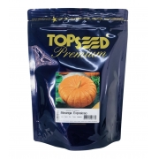 Sementes de Abóbora Moranga Exposição - Topseed Premium