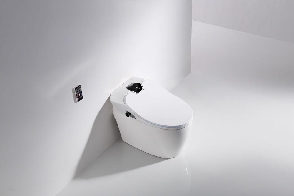 Niigata Smart Toilet Denfa