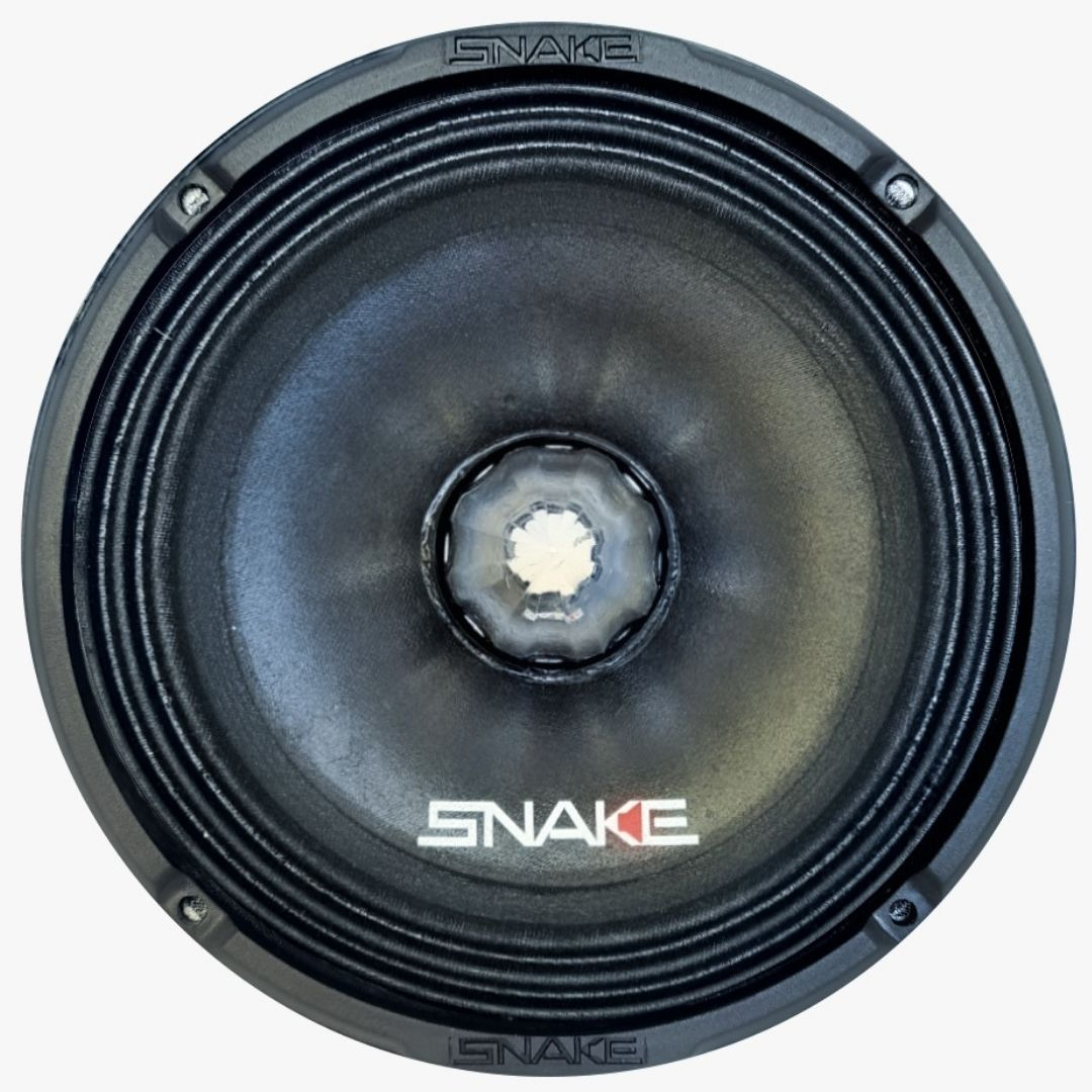 Par Alto Falantes 6'' Snake Pro ESV 200 God Of War 200 WRMS