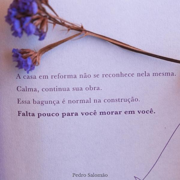 Eu Mesmo Sofro, Eu Mesmo me Dou Colo | Pedro Salomão