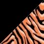 Tigresa Laranja e Preto