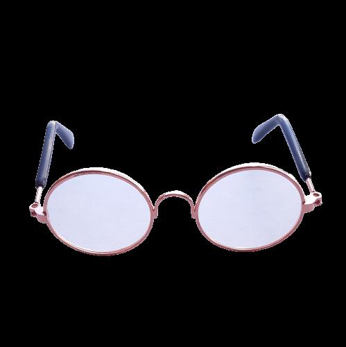 Óculos para pets