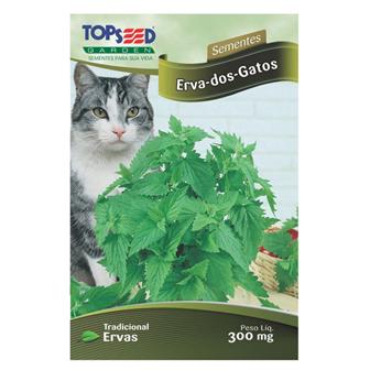 Sementes de Catnip - Erva dos Gatos