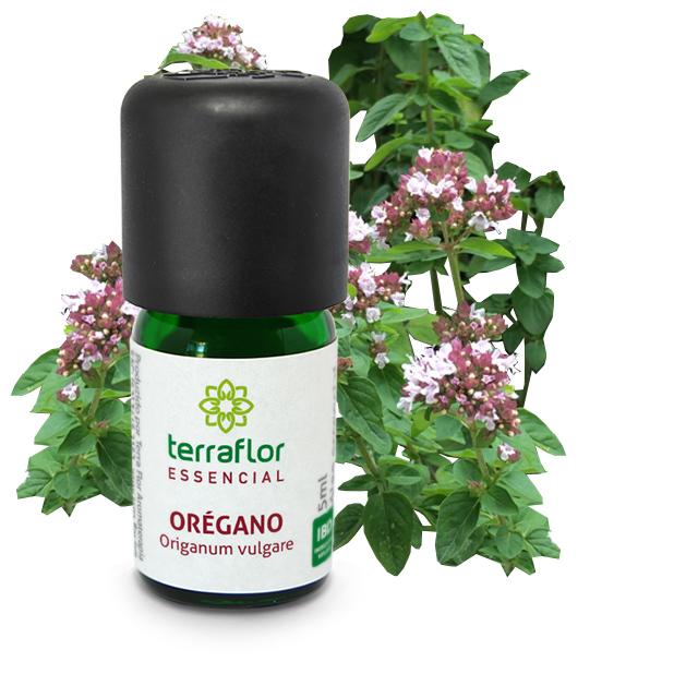 Óleo Essencial Orégano Terra Flor 5 ml