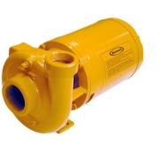 Bomba Centrifuga 2cv T 2dl 1-T 93200319