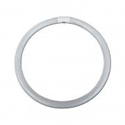 Lamp Fluor Circ 22 W (Refil) 50