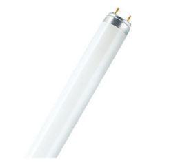 Lamp Fluor 30 W T8 765 7004461