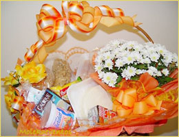 Cesta Diet/Light Tradicional