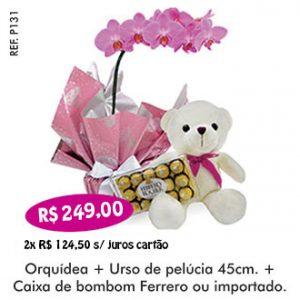 Presente Especial Orquídea com pelúcia e bombom