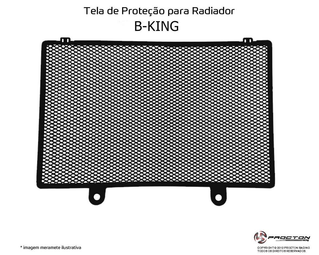 Protetor de Radiador Suzuki B-King Procton