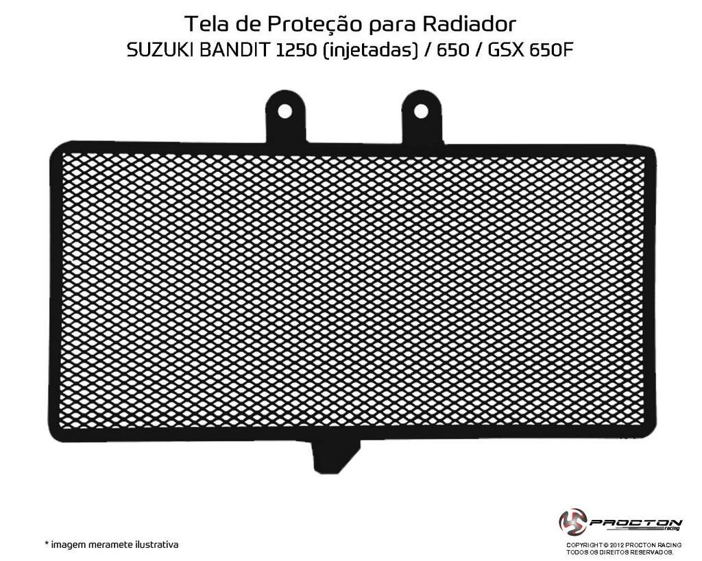 Protetor de Radiador Suzuki GSX 650F Procton