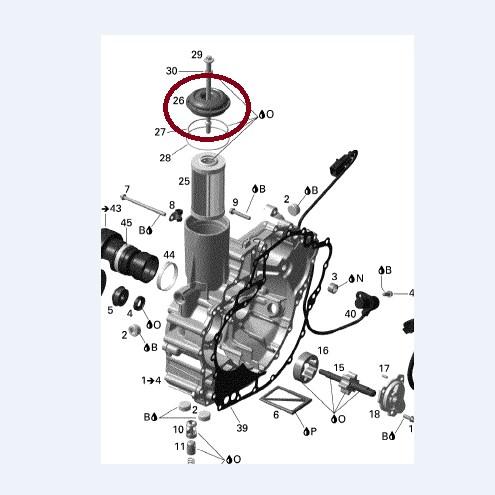 Capa Filtro Oleo Jet Sea 4 TEC - WSM