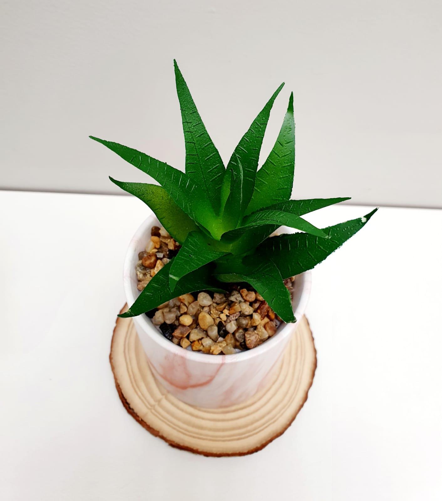 Vaso Marbled com suculenta