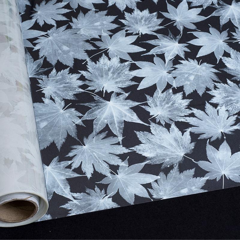 Película Decorativa Folhas  - SUN PROTECT