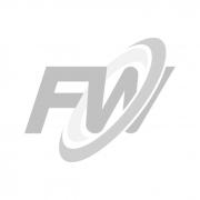 Módulo SFP+ MODULE FW 23/32G10-100