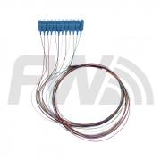 Pigtail 12 Cores SC/UPC SM 0.9MM 1M
