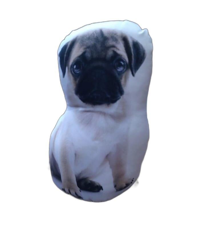 peso para porta Pug