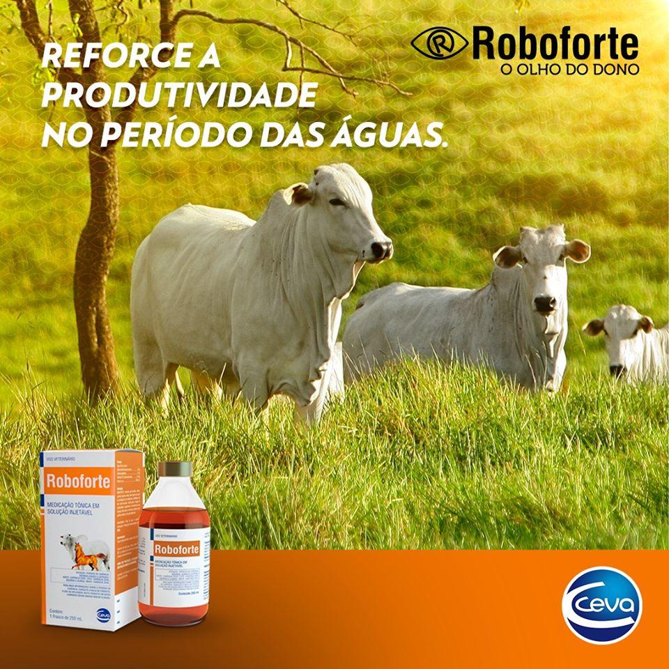 Roboforte 250 Ml - Ceva ( Vitamina B12 + Fosforo Injetável )