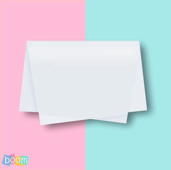 Papel de seda 48x60cm Branco