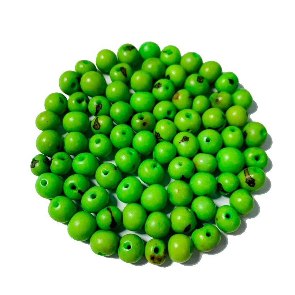 Semente de Açaí Verde Claro