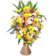 Corbelie Media de Flores do Campo