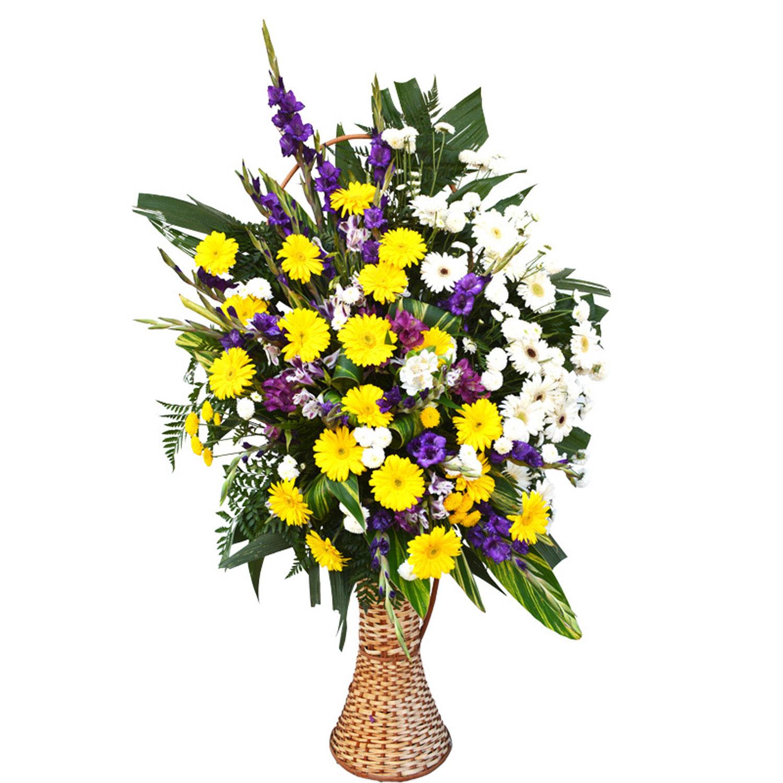 Corbelie Media de Flores Nobres