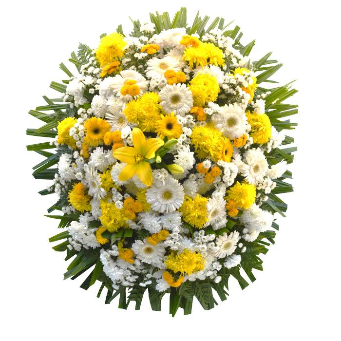 Coroa Branco e Amarelo