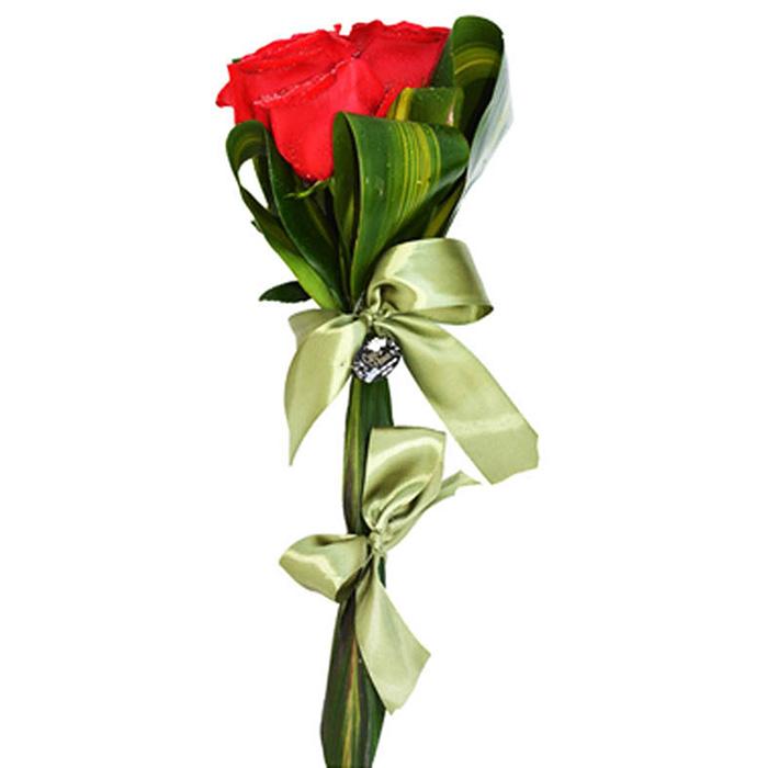Meu Amor, Minha Flor